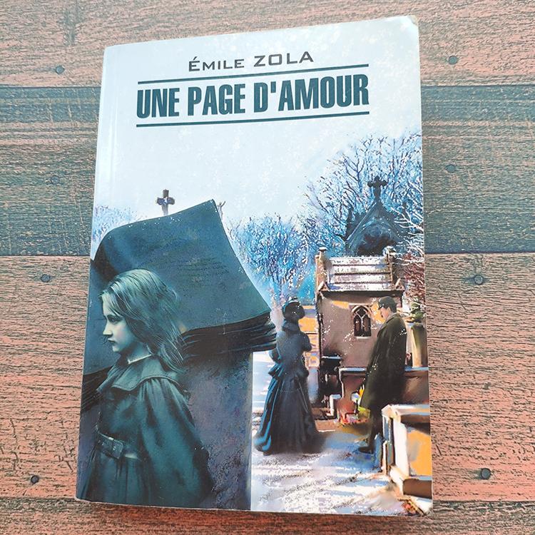 страница любви золя