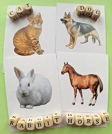 животные на английском